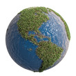Green Earth symbol