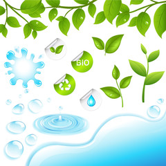 Collection Of Green Branches And Water Elements
