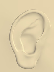3d image of a human ear