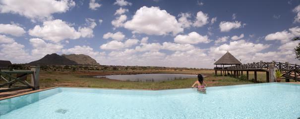 Safari from the Pool