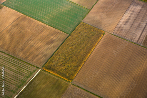 aerial of fields in indian summer colors