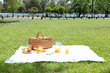 Picnic in a park - 29496409