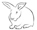 Tracing of a white rabbit