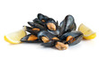 mussels with lemon isolated - cozze e limone