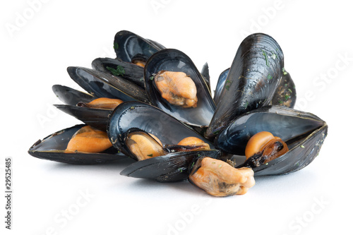 boiled mussels - cozze bollite
