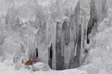 fringe of ice poster