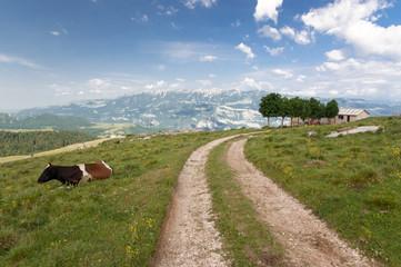 Italian Alps, South Tyrol