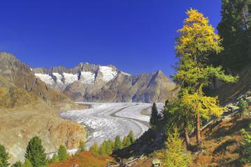 Aletschgletscher, Riederalp, Wallis, Schweiz