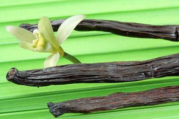 gousses et fleur de vanille Bourbon sur feuille de palmier