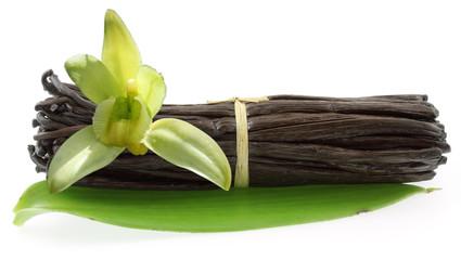 fleur de vanille Bourbon sur botte de gousses de vanille