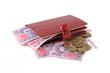 Red leather purse with money: ukrainian banknotes
