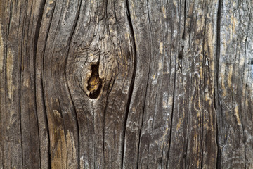 wood texture Astloch