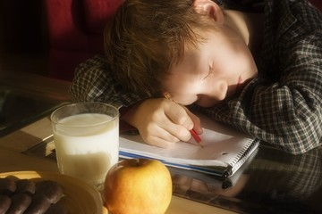 Boy Sleeping On Homework