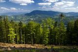 Fototapeta szczyt - szczyty - Góry