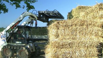 Farmer Loading Hay