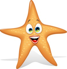 Stella Marina Cartoon-Starfish Cartoon-Vector