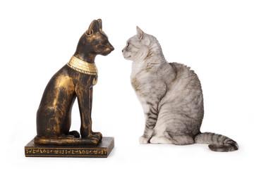 chat regardant une statue de chat égyptien