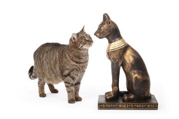 chat intrigué par une statue de chat égyptien