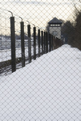 concentration camp fence