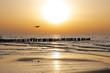 Fototapeten,ostsee,sonnenuntergang,stranden,gull