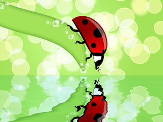 Ladybug on Leaf Looking at Water Reflection