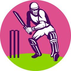 cricket sports batsman batting wicket