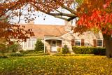 Fototapety House Philadelphia Yellow Fall Autumn Leaves Tree