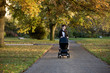 A mother pushing a buggy in the park