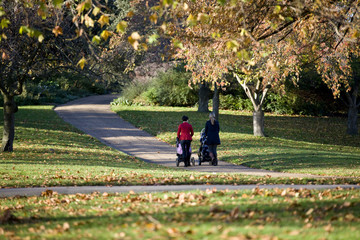 Two mothers pushing their buggies in the park, rear view