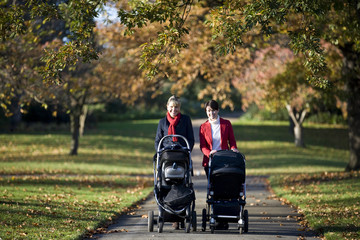 Two mothers pushing their buggies in the park