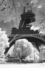 Czarno-białe zdjęcie z Eiffel