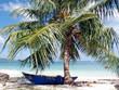 Boot unter Palme auf Samana