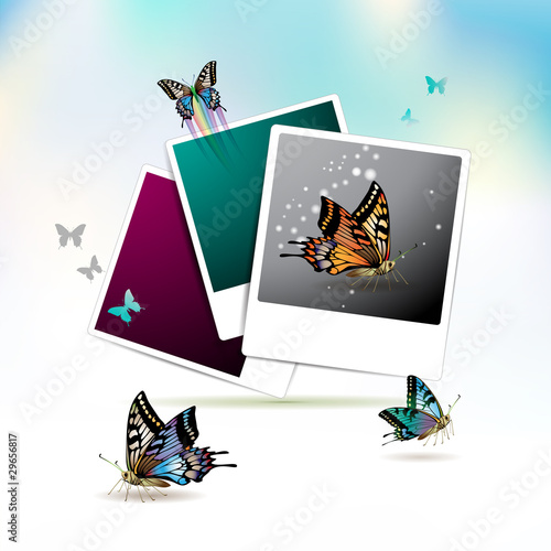Photos collection with butterflies over sky background