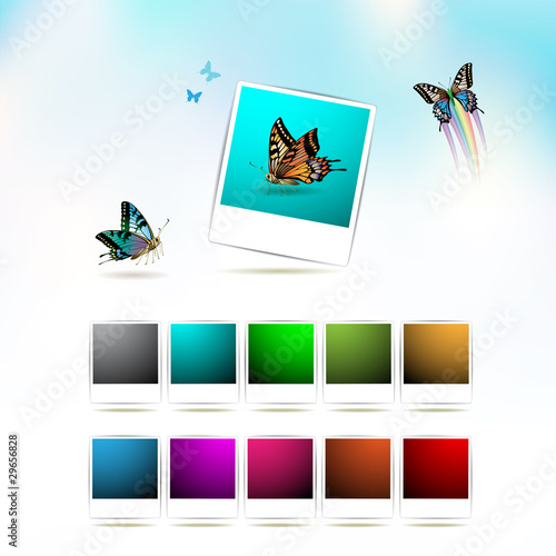 Set of blank colorated photos and butterflies
