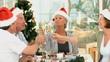 Elderly friends drinking champagne