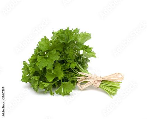 parsley tied isolated