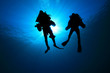 Two Technical Divers silhouetted against sun