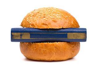 Intellectual burger