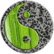 yin yang pierre et palmier