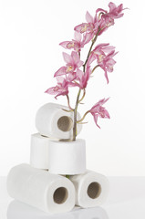 Concept still life with toilet paper and pink orchid