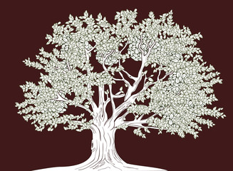 Graphical illustration of old tree
