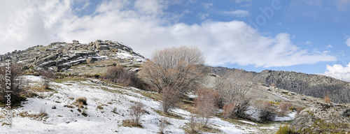 panoramic landscape in winter