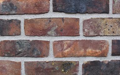 Ziegelsteinmauer, geflammt