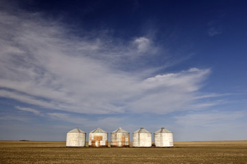 Five granaries in the middle of a field