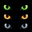Cat Eyes n Darkness