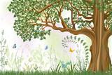 Fototapety Oak tree