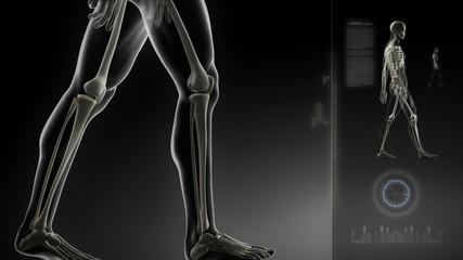Human walking man knee scan