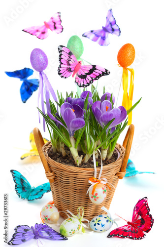 Easter arrangement with crocuses, butterflies and eggs