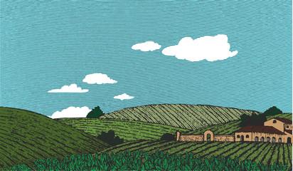 Tuscan Landscape Scene Color