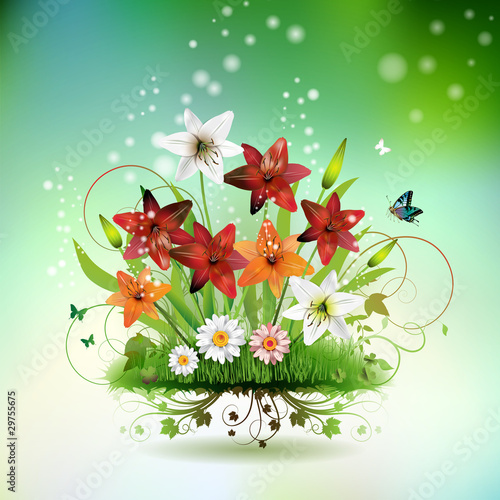 Flowers in the grass and butterflies, lilies of different colors
